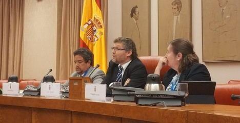 Fabián Salvioli en el centro: el 'listillo' de turno dando clase en el Congreso de los Diputados. (Foto: www.publico.es)