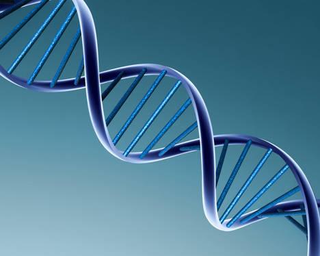 Por qué nuestro código genético quizá sea extraterrestre pero las Pirámides no